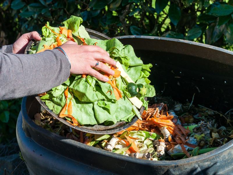 Last Chance For NSW EPA Food Waste Avoidance Grants