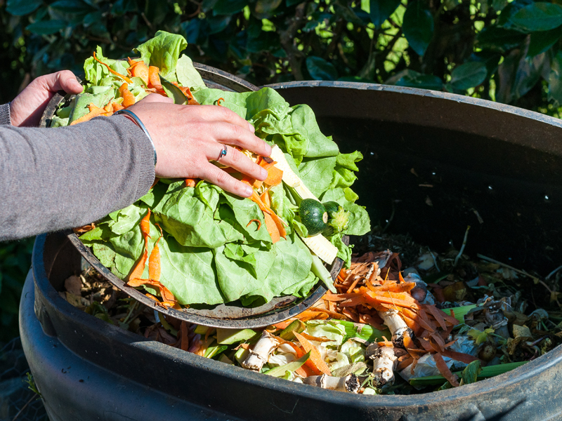 Education focus to latest funding to cut food waste