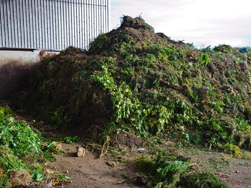 Green organic waste