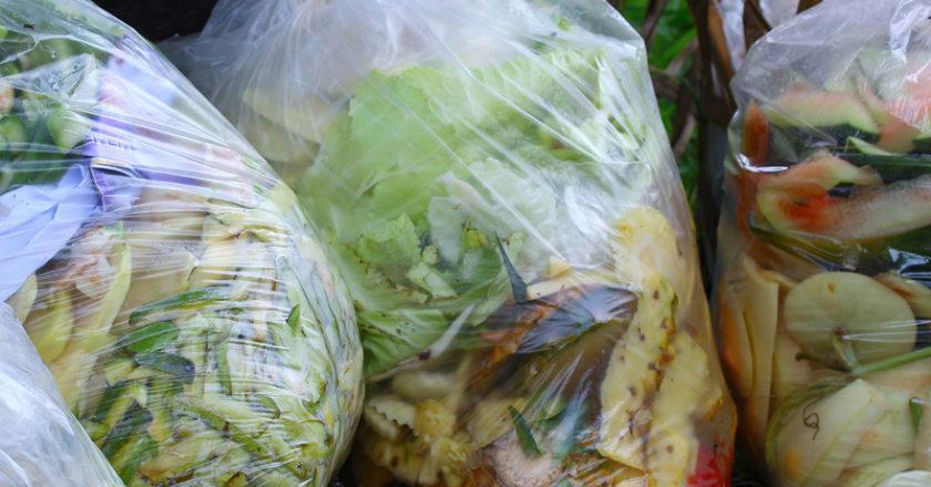Bagged food organics waste for composting