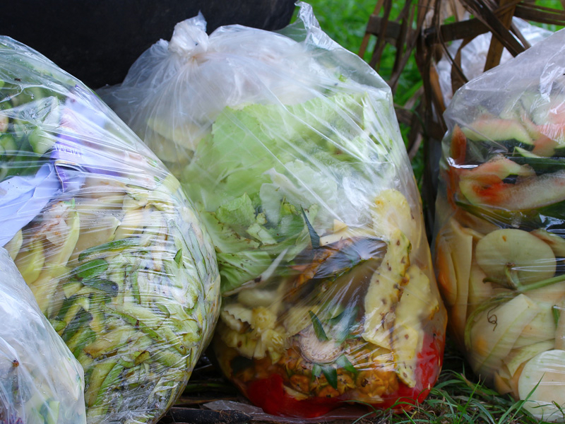 Bagged food organics waste for composting
