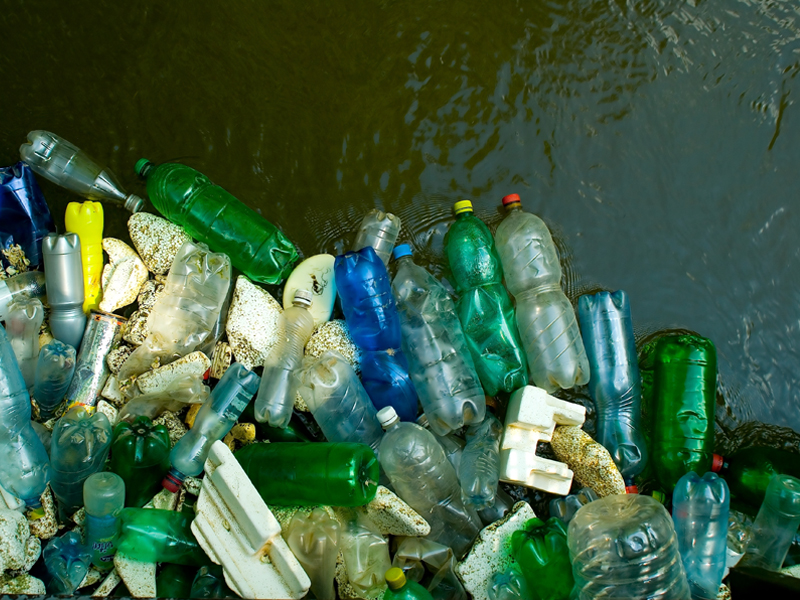 Plastic bottles dumped