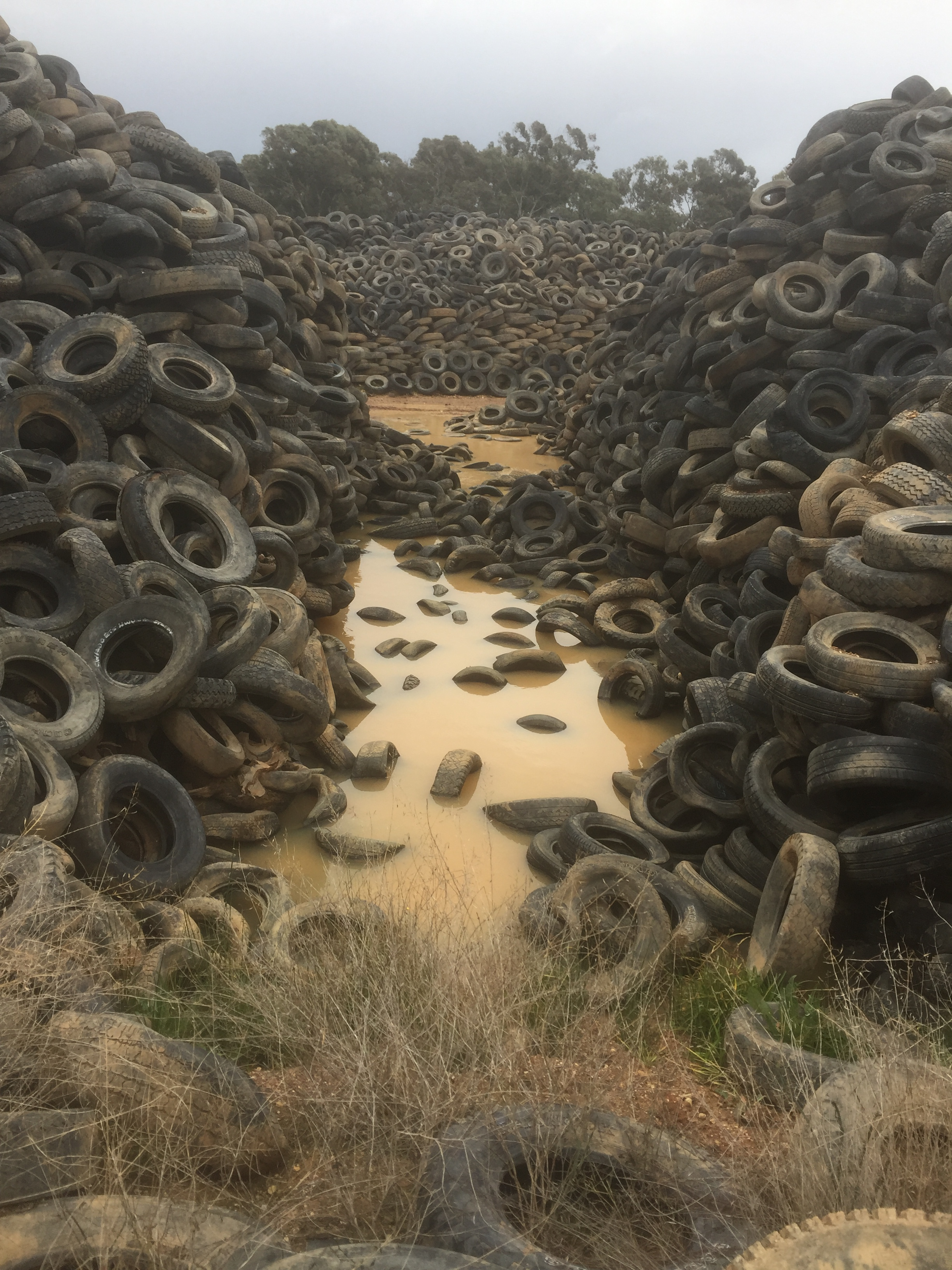 Tyrecycle's call to end stockpiling
