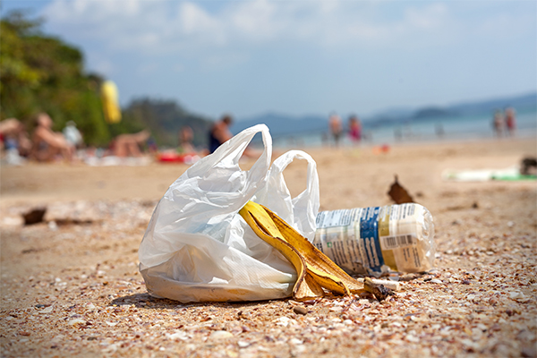 WA's plastic bag ban enforcement to start in 2019