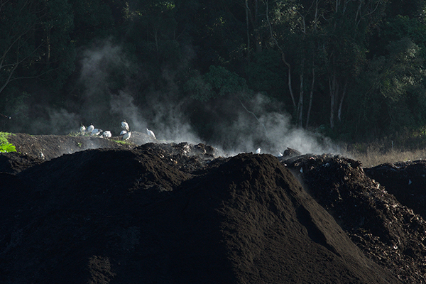NSW EPA's compost training ground