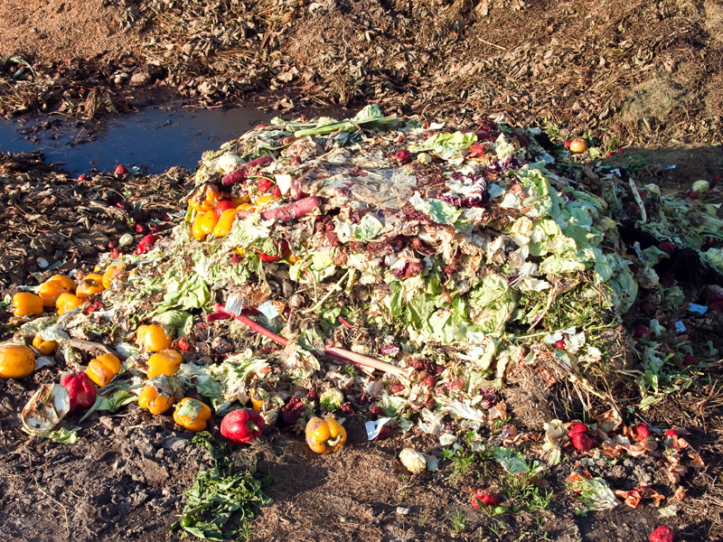 Victoria invests in Love Food Hate Waste program