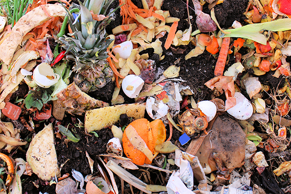 NSW targets zero organics in landfill by 2030