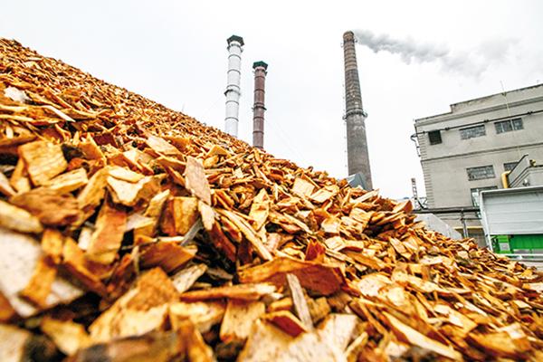 WA named preferred site for new biomass facility