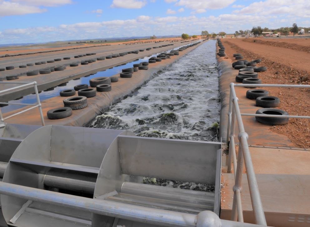 Flinders University research adding value to wastewater
