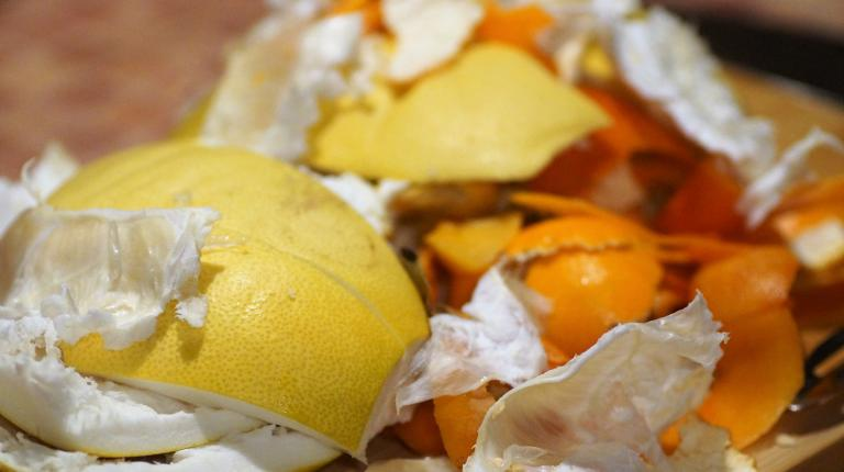 Victorian University survey exploring energy from food waste