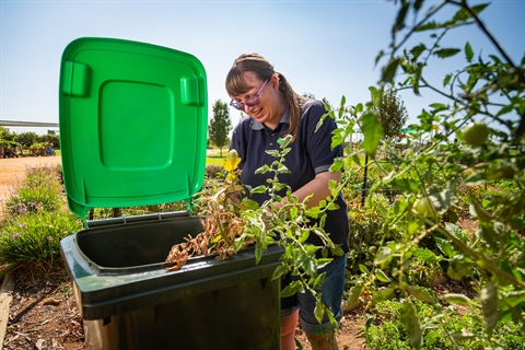 Three-bin service proving effective for VIC council