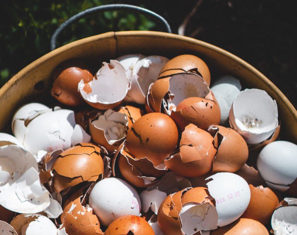 food waste eggs