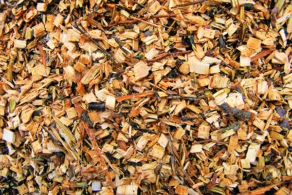 Trial funded to turn sawmill waste into diesel and bitumen
