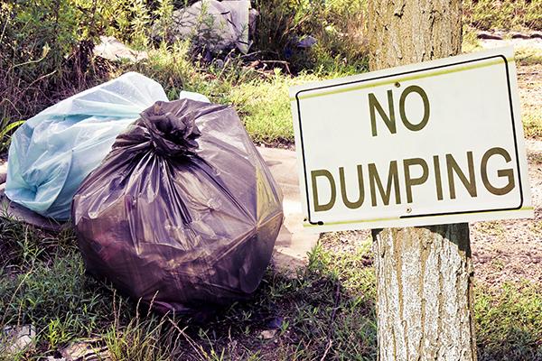 Dobbing in dumpers