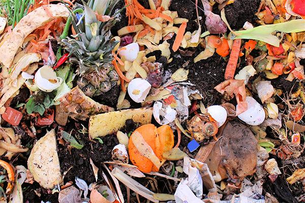 National Food Waste Baseline report released