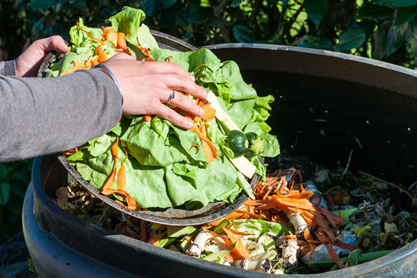 Composting remains our biggest recycling opportunity