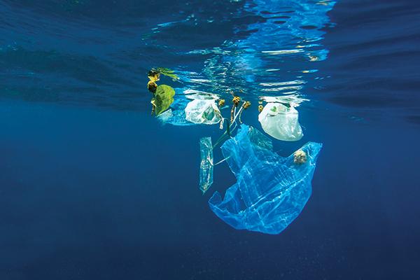 SA to ban single-use plastics